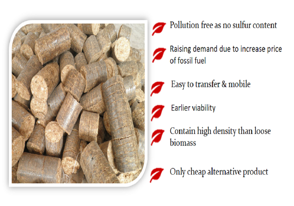 Benefits of Briquettes_Overview