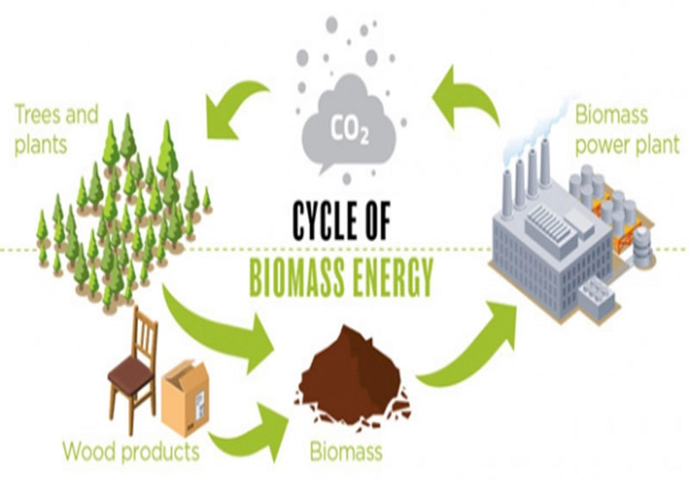 biomass-benefits-min